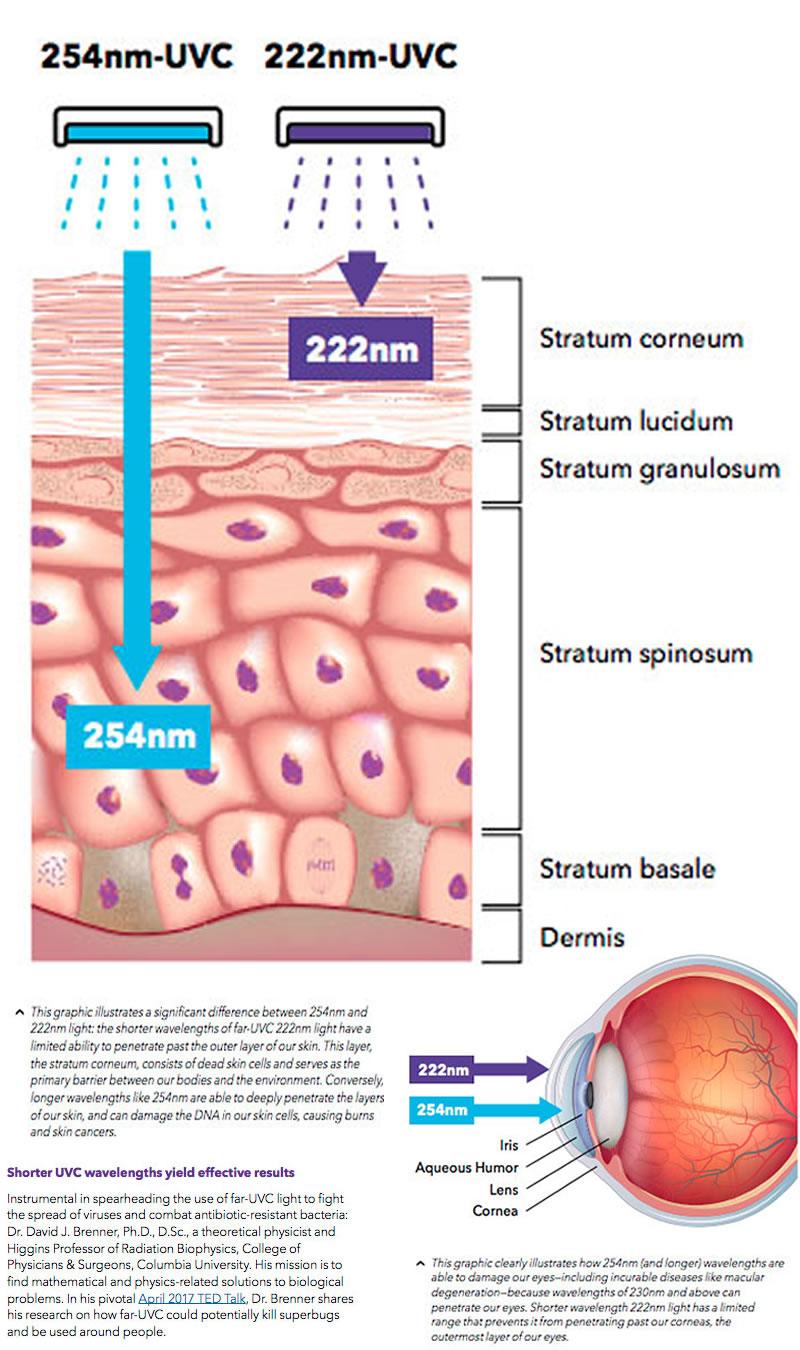 -far-uv-uvc-uv-test-on-eyes-skin-far-uvc-222nm-filtered-bandpass-far-uvc-eyes-skin-irradiation